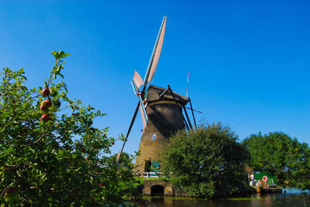 Dutch mill on the waterside with an appletree photo