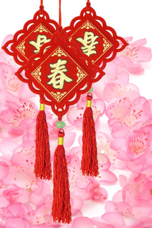 Traditional Chinese New Year ornaments on plum blossom background photo