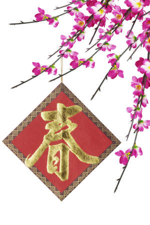 Chinese new year ornament and cherry blossoms on white background