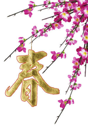 Chinese New Year calligraphy ornament and plum blossoms on white background  photo