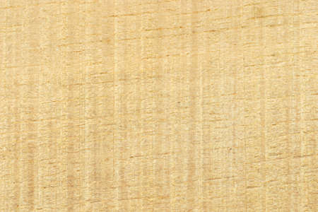 sawn: Close up of sawn timber surface texture background