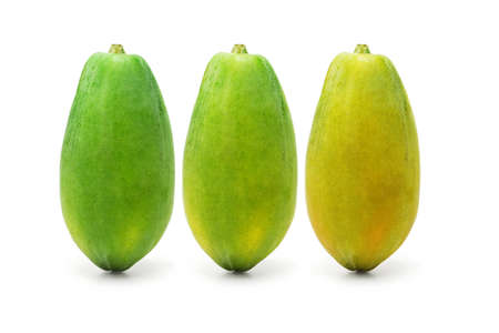Three ripening papaya fruits on white background