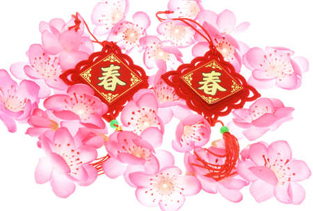 Chinese New Year ornaments and plum blossoms on white photo