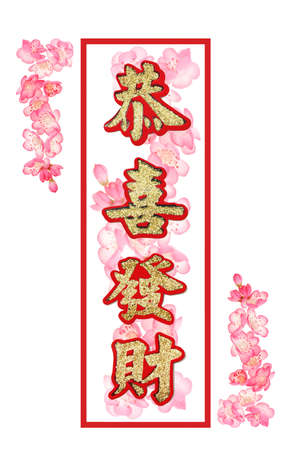 blessings: Chinese new year auspicious greetings with plum blossom background on white