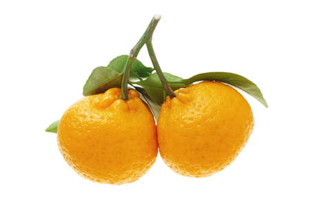 Mandarin oranges for Chinese New year celebration and decoration on white background