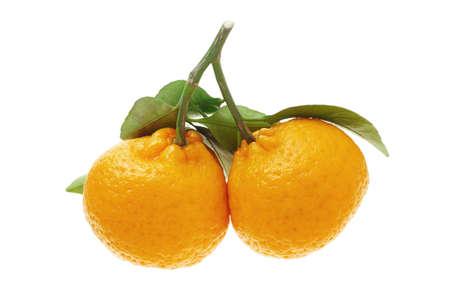 Mandarinas para la celebración del Año Nuevo Chino y la decoración sobre fondo blanco