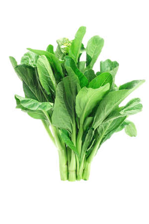 Bunch of fresh green mustard on white background (Brassica juncea)
