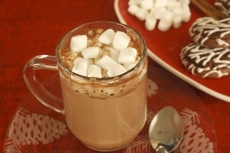 Take a break from trimming the tree with a steaming cup of hot cocoa and some chocolate cookies. Stock Photo - 8040423