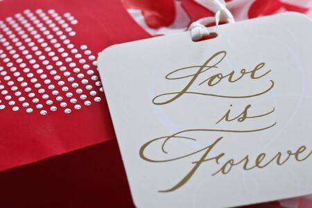 Red bag with silver studded heart and a gift tag - love is forever. Stock Photo - 8549420