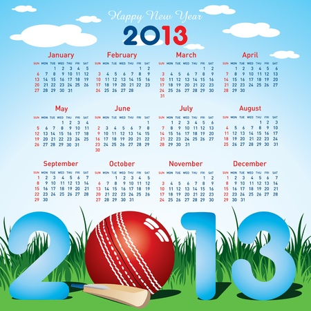 new year calendar 2013  for cricket stock vector Vector