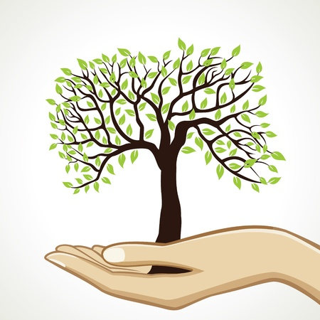 hands holding plant: small tree on hand stock vector