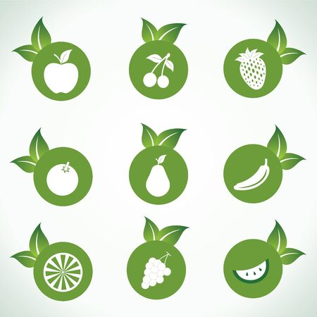 Different fruit icons and design with green leaf stock vector Vector