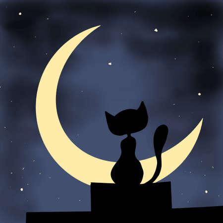moon: cat facing the moon