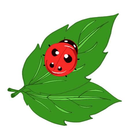 ladybug with leaf icon Illustration