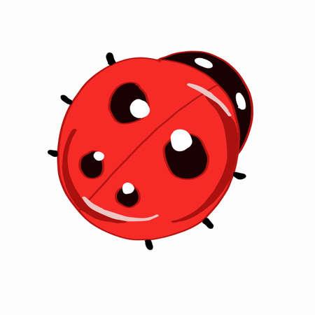increased: ladybug icon