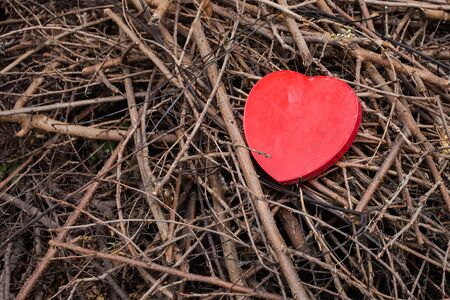 plastic heart: red plastic heart on the branch Stock Photo