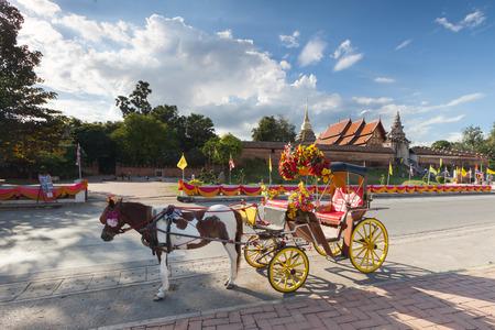 amish buggy: horse carriage at Lumpang province Thailand