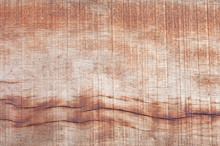 wood surface: texture and art of wood surface
