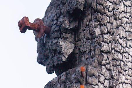 quemadura: quema la madera, la corrosi�n perno