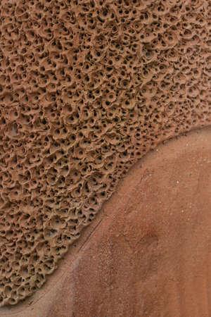 porosity: soil porosity