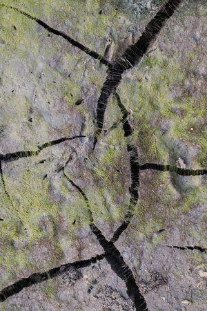 fissure: boue fissure