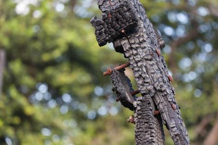 corrosion: wood burn, bolt corrosion