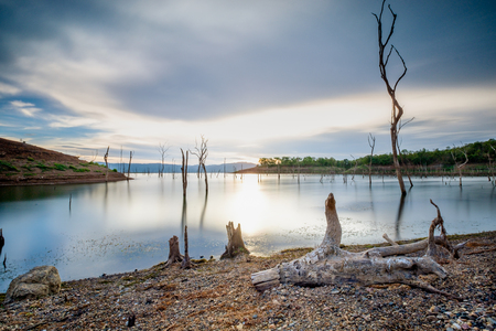 water soucre become lower and showing dead tree, Thailand Stock Photo