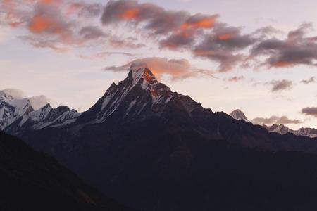 machapuchare summit 6998 msl at Annapurna conversation area at Tadapani, Nepal