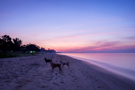 morning time of Beach at Rayong province, Thailand