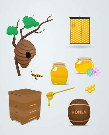 bank branch: Barrels and bank of honey in vector set for apiary. The bee flies with a spoonful of honey in the hive. Branch with a beehive, honeycomb and honey in vector illustration.