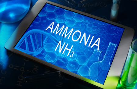 ammonia: AMONIACO