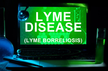 lyme: Computer with words Lyme disease (Lyme borreliosis).