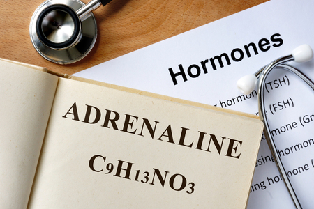 adrenaline: Adrenaline word written on the book and hormones list. Stock Photo