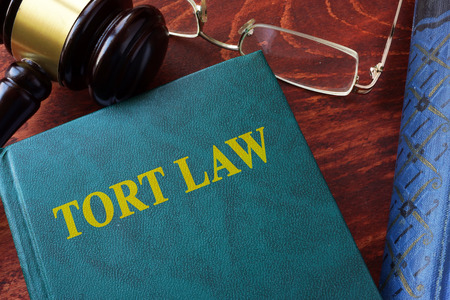 tort: Tort law title on a book and gavel. Stock Photo