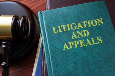 appeals: Litigation and appeals title on a book and gavel.