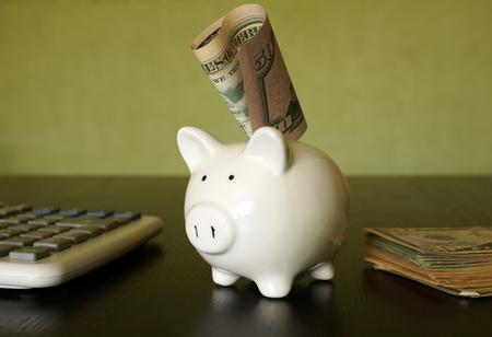 earn money: Savings concept. Piggy bank, calculator and dollars.