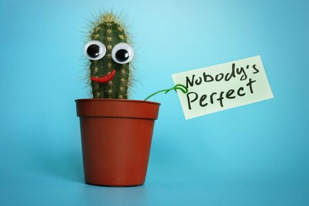 Funny cactus with sign Nobody is perfect. Archivio Fotografico