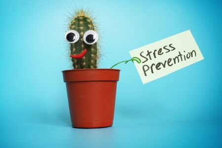 Stress prevention sign and cactus with smile. Imagens