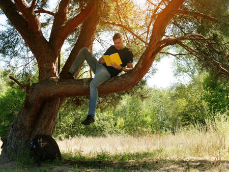 Summer vacation in the forest. The guy in the tree is reading a book.