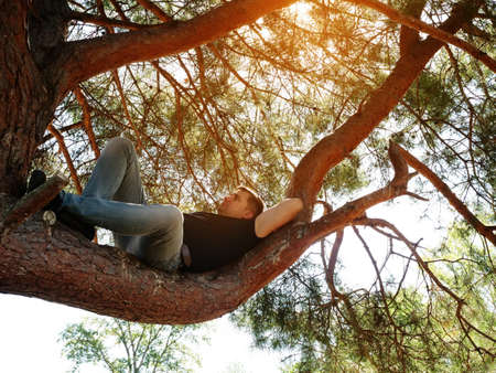 A man is resting lying on a branch in a summer forest.