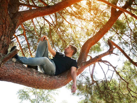 A man lies on a tree branch and relaxes. Summer sunny day. Adventure and travel.