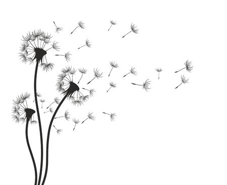 Dandelions on a wind a sketch.