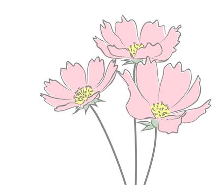 wild flowers: Sketch of wild flowers.