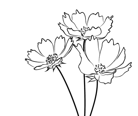 花束の野生の花のスケッチ。  イラスト・ベクター素材