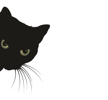 silueta de gato negro: gato negro depredador.