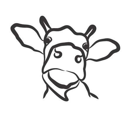 hoofed mammal: Drawing of cow head.