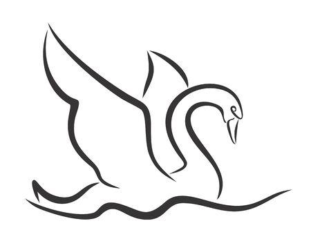 floating: Sketch of floating swan. Illustration