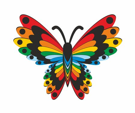 color butterfly: Bright color butterfly. Stock Photo