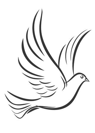 wingspan: Sketch of the flying pigeon.