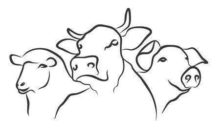 hoofed animals: hoofed animals. Illustration